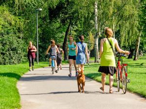 """Die Grünanlagen sind wichtige Orte für Sport, Freizeit und Erholung – gleichzeitig sind sie als """"grünen Lungen"""" für das Stadtklima unersetzlich. Innerer Grüngürtel an der Aachener Straße Foto: Daniel Ullrich"""