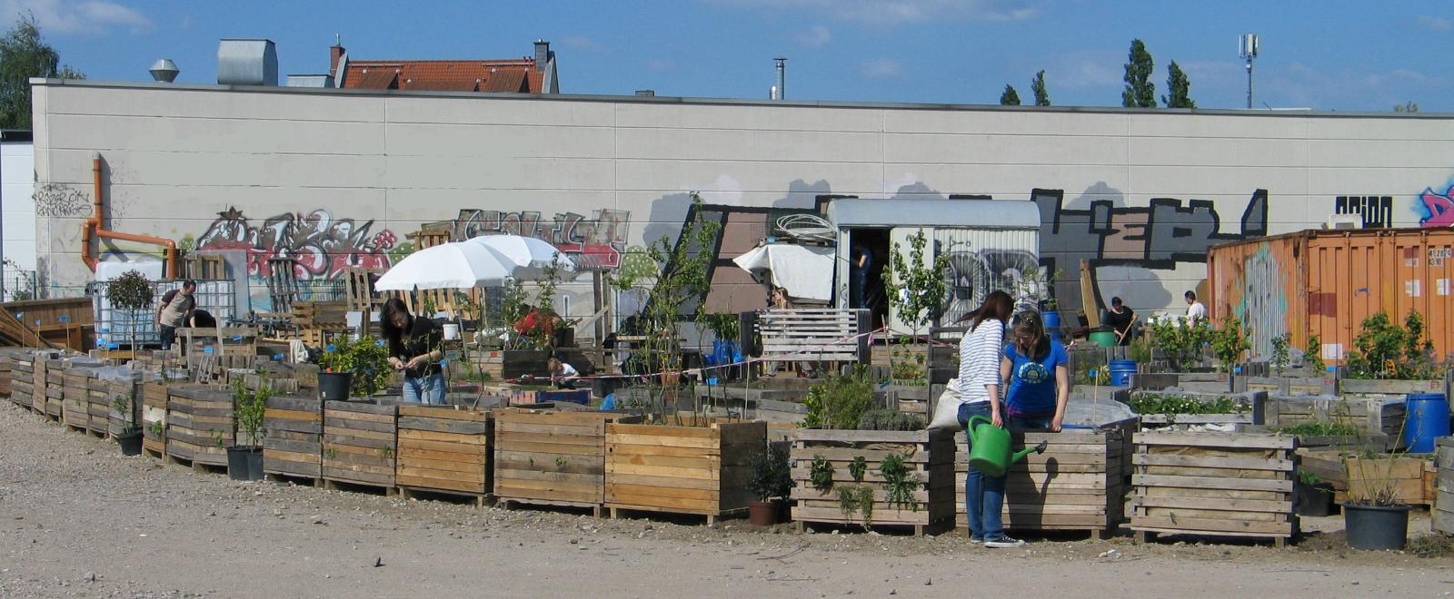 GärtnerInnen im Gemeinschaftsgarten Gartenbahnhof Ehrenfeld im April 2014 bei der Arbeit